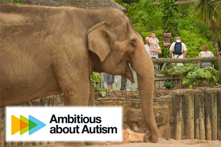 Chester Zoo, Autism and Accessibility