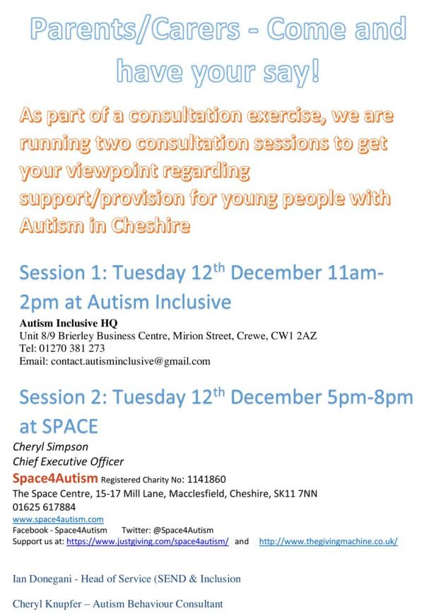 Autism Strategy Group Meetings